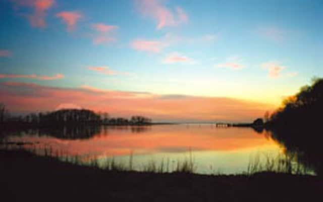 Marshlands Conservancy is among the Westchester Parks offering weekend events.