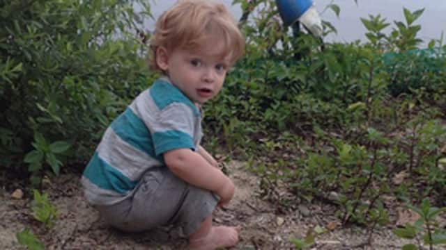 Benjamin Seitz was 15 months old when he died in a hot car in Ridgefield.