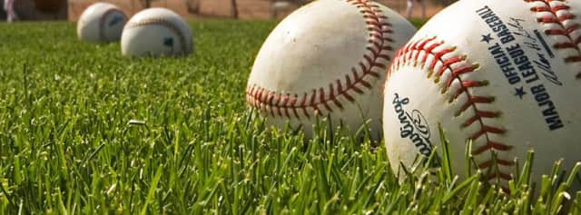 The Dobbs Ferry Little League and the Dobbs Ferry Recreation Department are co-hosting The Home Run Project Dec. 13.