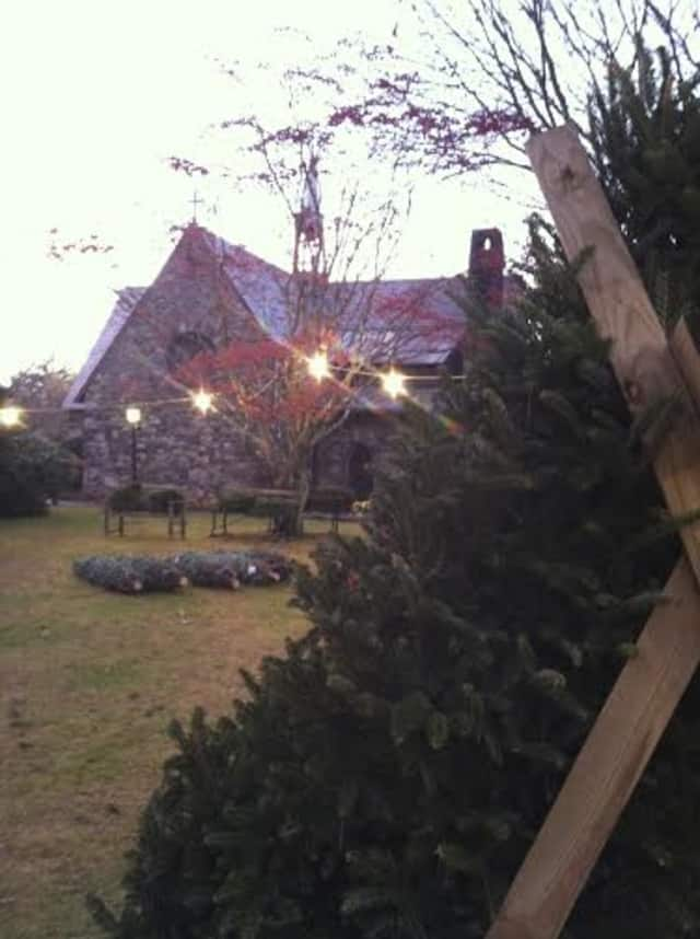 All Saints Church is holding its annual Christmas Tree Sale.