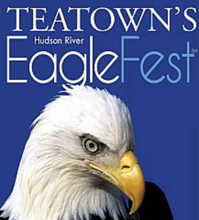 Teatown's Hudson River EagleFest will be held on Saturday, Feb. 7 at Croton Point Park (Eagle Headquarters) to celebrate the bald eagle's return to the area.