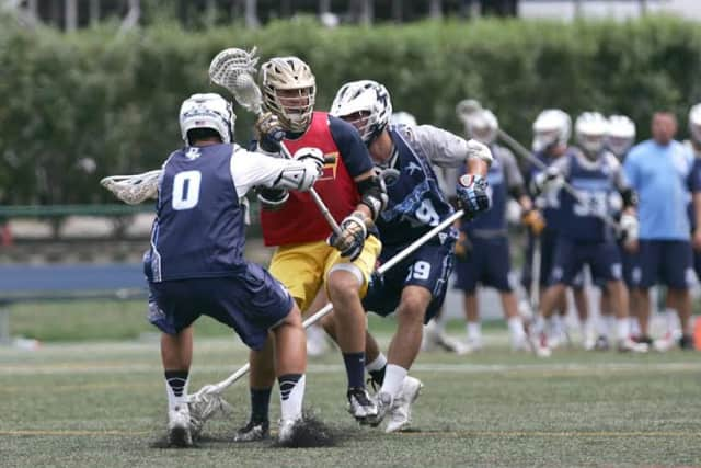 Anthony Sardo in lacrosse action.