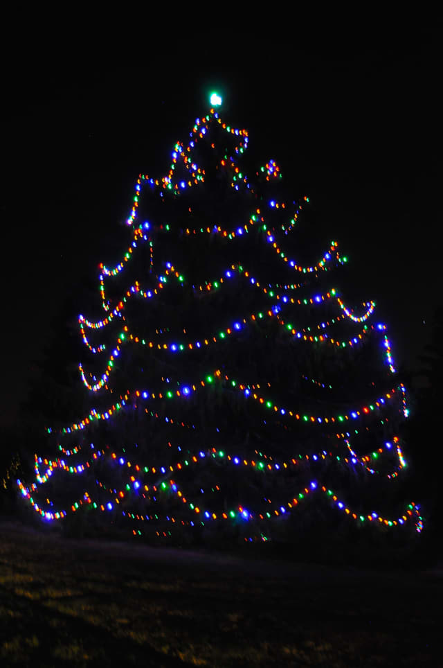 Christmas tree at Lasdon Park, Route 35 in Somers.