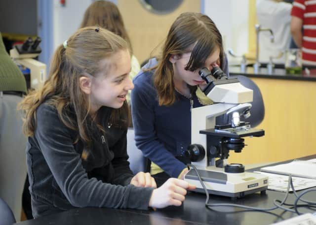 """Students participating in the WCSU """"Building a Bridge to Improve Student Success"""" program take hands-on biology classes."""