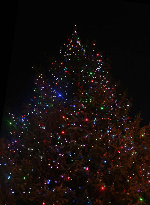 Scarsdale's annual holiday tree lighting is at the village's Boniface Circle.