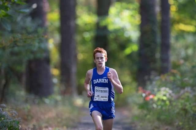 Darien's Alex Ostberg won the Gatorade Cross Country Runner of the Year for the second straight time.
