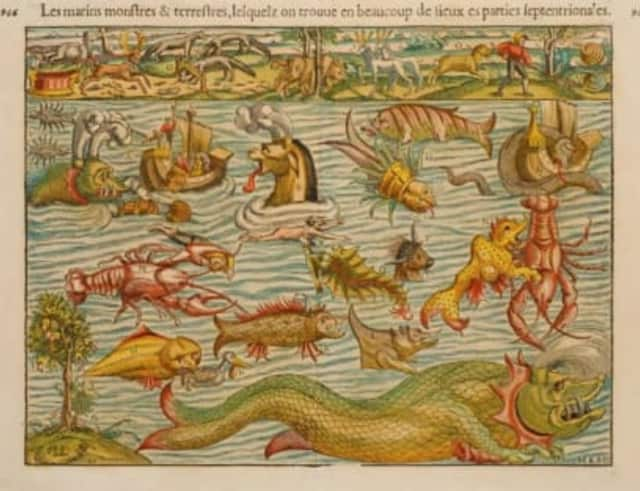 Sebastian Münster, Marine and Land Monsters (Basel, 1552).Renaissance mapmakers always enhanced their product by adding decorative elements, making it more attractive. Münster outdid them all by cataloguing the many invented monsters he used.