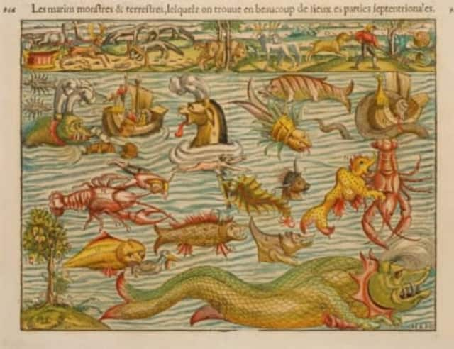 Sebastian Münster, Marine and Land Monsters (Basel, 1552), is part of the exhibit.