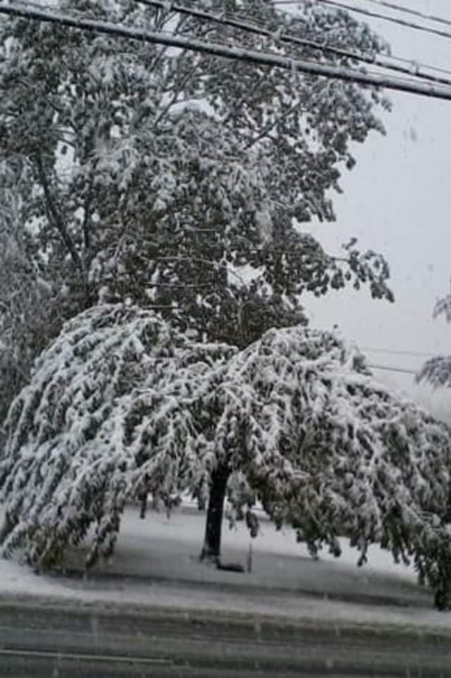 A total of 5 to 8 inches of heavy, wet snow is predicted to fall on northern Fairfield County on Saturday.