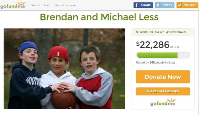 A screen shot of the GoFundMe-based fundraiser for North Salem's Michael and Brendan Less. The photo is of the brothers, pictured at left and right, when they were kids.
