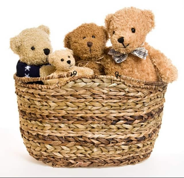 Bring teddy bears to get examined and learn health tips at Northern Westchester Hospital's Teddy Bear Clinic.