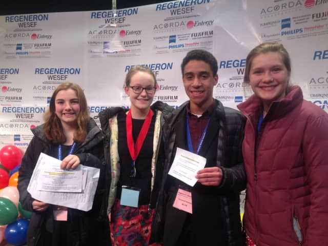 Four Hastings High School students were recognized for their science projects at the Westchester Science and Engineering Fair. From left to right: Ava Dishian, Faith Shaeffer, Campbell Silverstein and Sarah Markley.