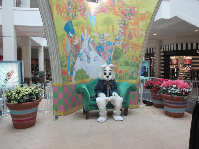 The Easter Bunny Photo Experience at The Westchester Mall in White Plains will begin on Friday, March 17, at 10 a.m.