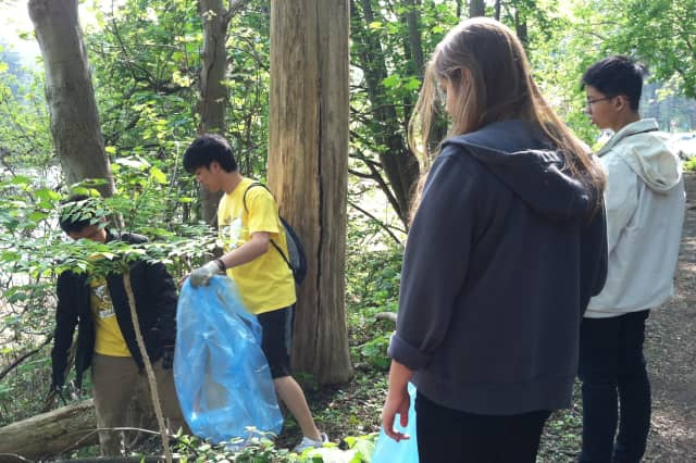 Students from Stamford's Newfield Elementary School and Hart Magnet Elementary School partner with UConn Stamford to clean up Cedar Street Park.