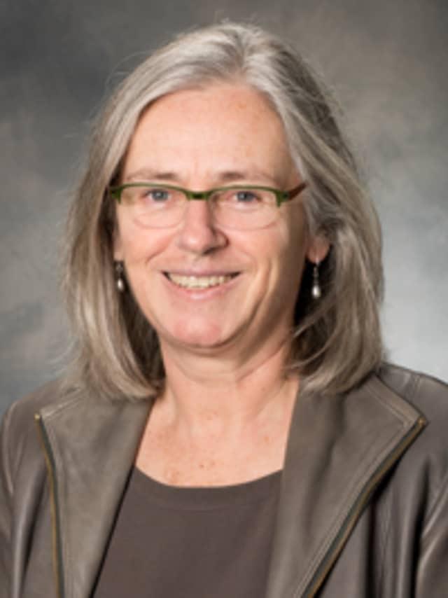 Melanie DuPuis, professor of environmental studies and science at Pace University.
