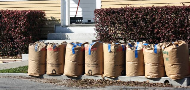 Bagged leaf collection in Stratford will resume April 4.
