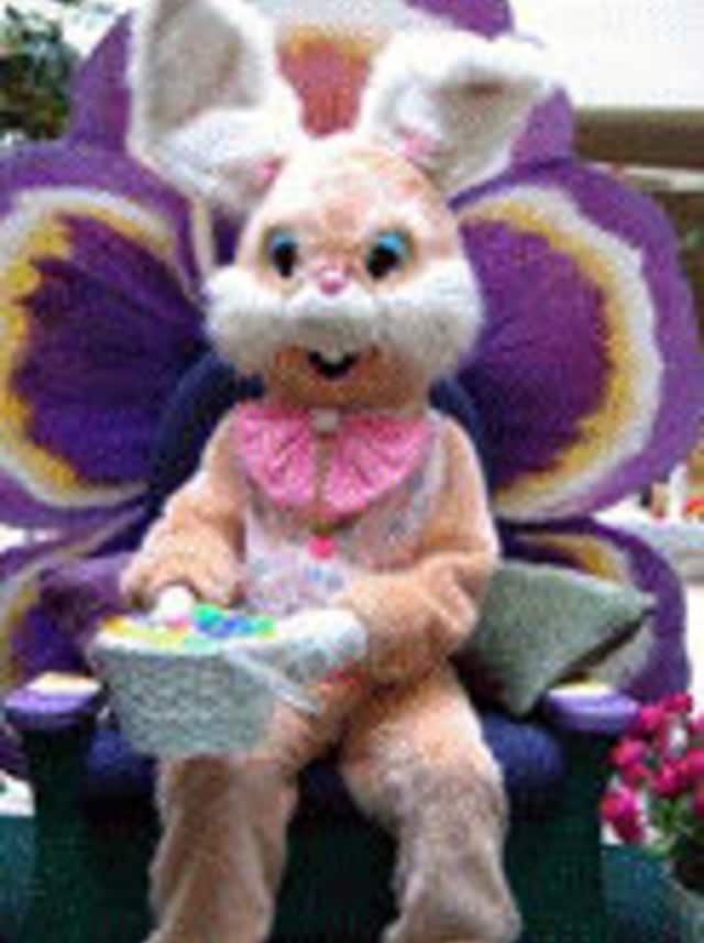 Hunt for eggs and visit with the Easter Bunny Saturday in Somers.