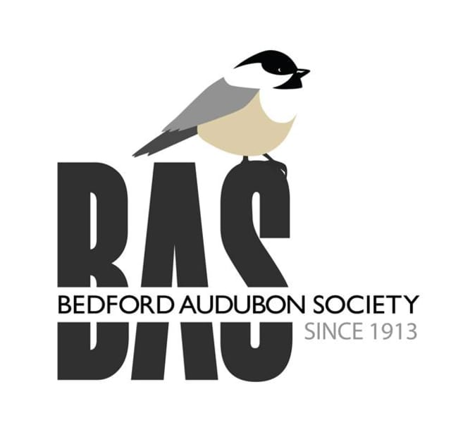 Bedford Audubon is offering lectures, workshops and walks during April.