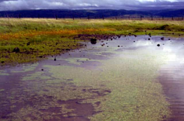 Lewisboro residents will have an opportunity to explore vernal pools.