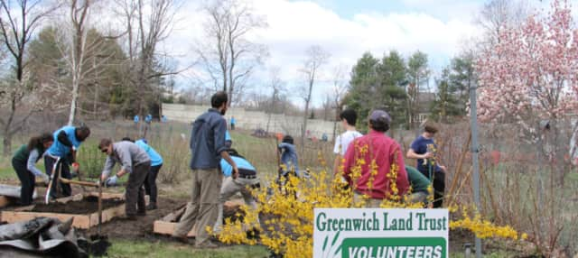 The Greenwich Land Trust will be celebrating Earth Day with its Beautification Project.