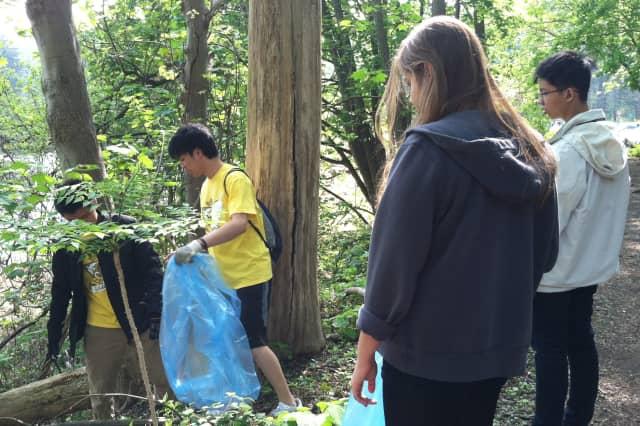 The Mount Kisco Beautification Committee needs volunteers to help clean up the village.