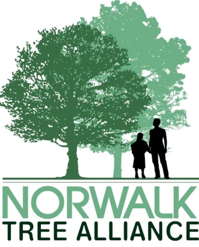 The Norwalk Tree Alliance's A Flowering Tree Photo Contest now includes a category for children 12 years of age and younger.