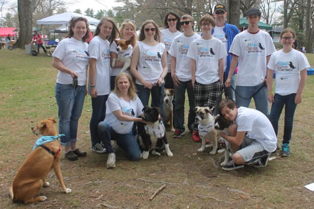 A New Chance Animal Rescue and their adoptable dogs at a previous event.