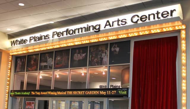 """The """"Dancing With Our Stars"""" competition will be at The White Plains Performing Arts Theater on May 2."""