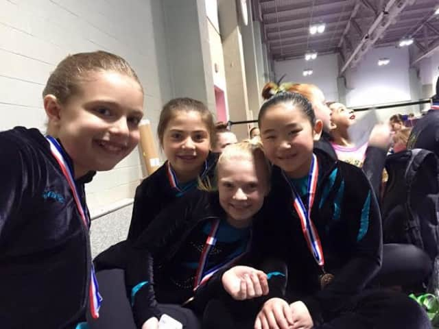 Level Five World Cup Gymnasts