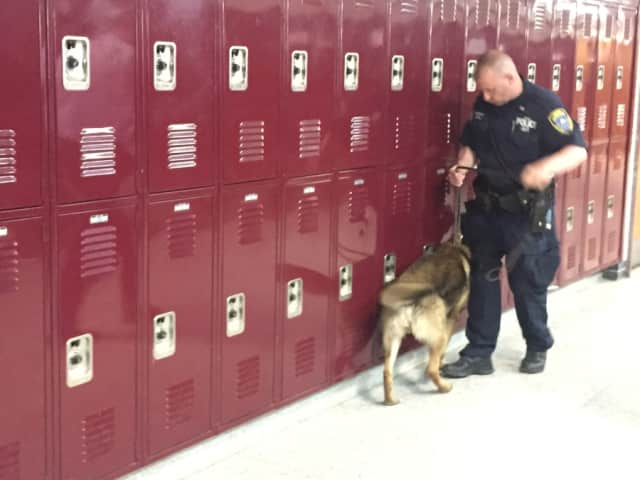 Local law enforcement sweeping Mount Vernon High School for illicit drugs and narcotics on Friday afternoon.