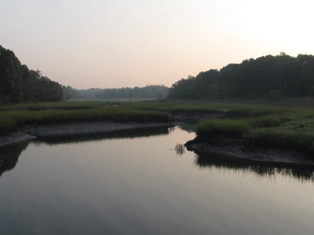 Westchester Land Trust was awarded $30,000 to acquire the 35-acre Otter Creek Preserve in the village of Mamaroneck as part of a transfer from The Nature Conservancy.