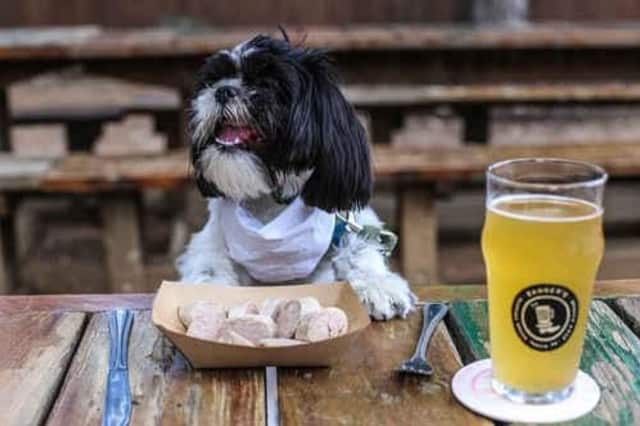 A New York state bill would allow dogs in outdoor areas of restaurants.