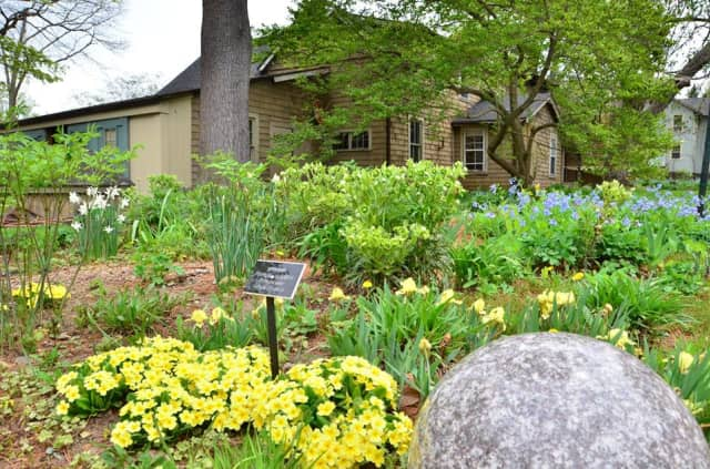 Bartlett Arboretum and Gardens is just one of the few amenities mentioned in the Stamford profile by the New York Times.