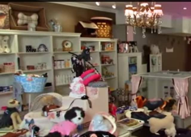 Furrylicious Pet Salon & Puppy Boutique has locations in Scarsdale and Whitehouse Station, N.J.