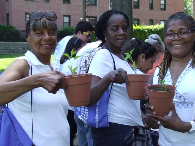 Port Chester residents show off their potted peppers in a recent workshop promoting community gardens.