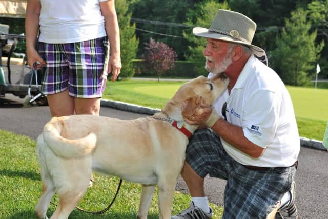 """Yorktown's Guiding Eyes for the Blind  honored its first """"Dog of the Year"""" at its annual Golf Classic."""