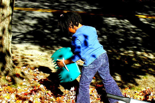 Shelton's first citywide pickup of leaves will be Nov. 2 to Nov. Nov. 6.