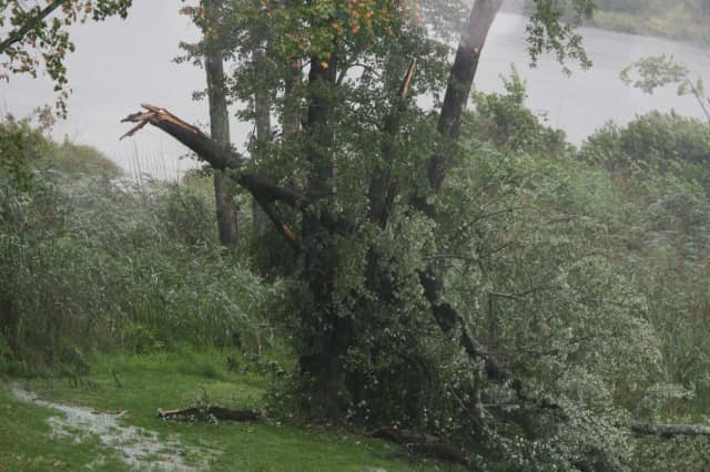 Tree limbs fell on Hardscrabble Road in North Salem during last year's storms.