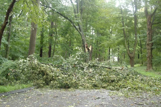 If you have pictures of storm damage from Hurricane Sandy, send them to us, Wilton.