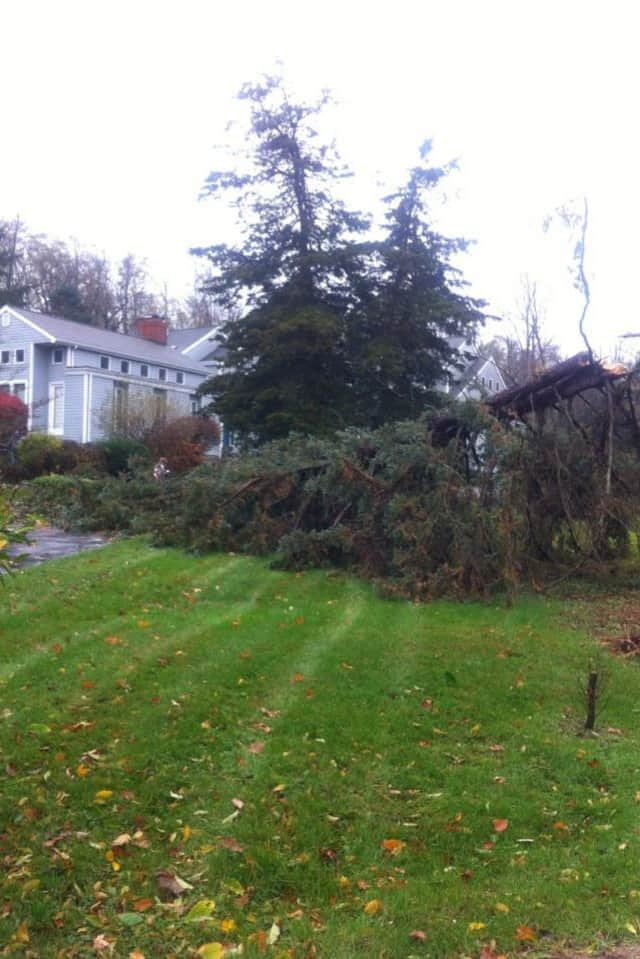 A tree fell near a home on Warncke Road in Wilton on Monday as the town continues dealing with rain and wind from Hurricane Sandy.