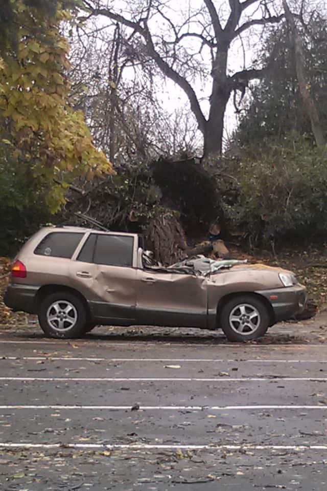 A small SUV was crushed by a fallen tree during Hurricane Sandy in the Yorktown Volunteer Ambulance Corps parking lot Tuesday morning.