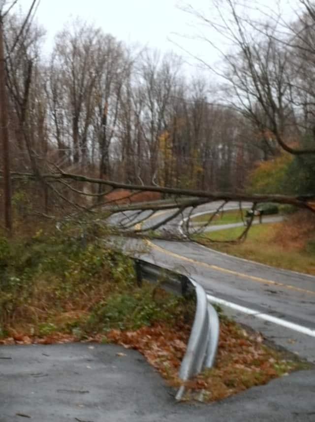 A tree blocks Route 124 between Lewisboro and Pound Ridge.