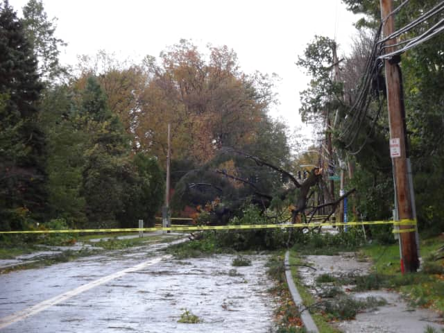 Hurricane Sandy knocked over a tree on Kimball Avenue by Sarah Lawrence College in Bronxville.