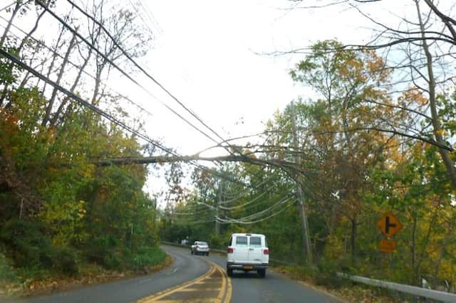 Overhanging trees like this one on West Hartsdale Avenue are the reason why several roads in Greenburgh are dangerous or closed.