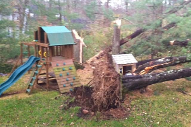 A tree almost crushed this backyard playground in New Canaan.