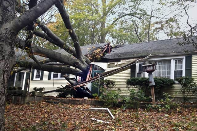 Governor Dannel Malloy has established a permanent working group – comprised of state agency heads and experts – that is responsible for strengthening the state's resiliency from extreme weather events, including hurricanes and ice storms.