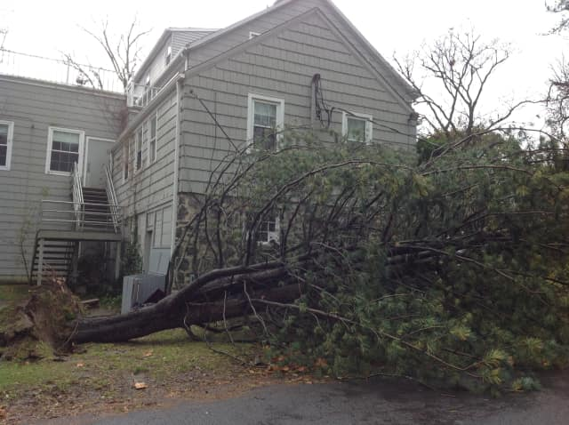 Rye Arts Center at 51 Milton Road in Rye is closed due to a downed tree and power lines.