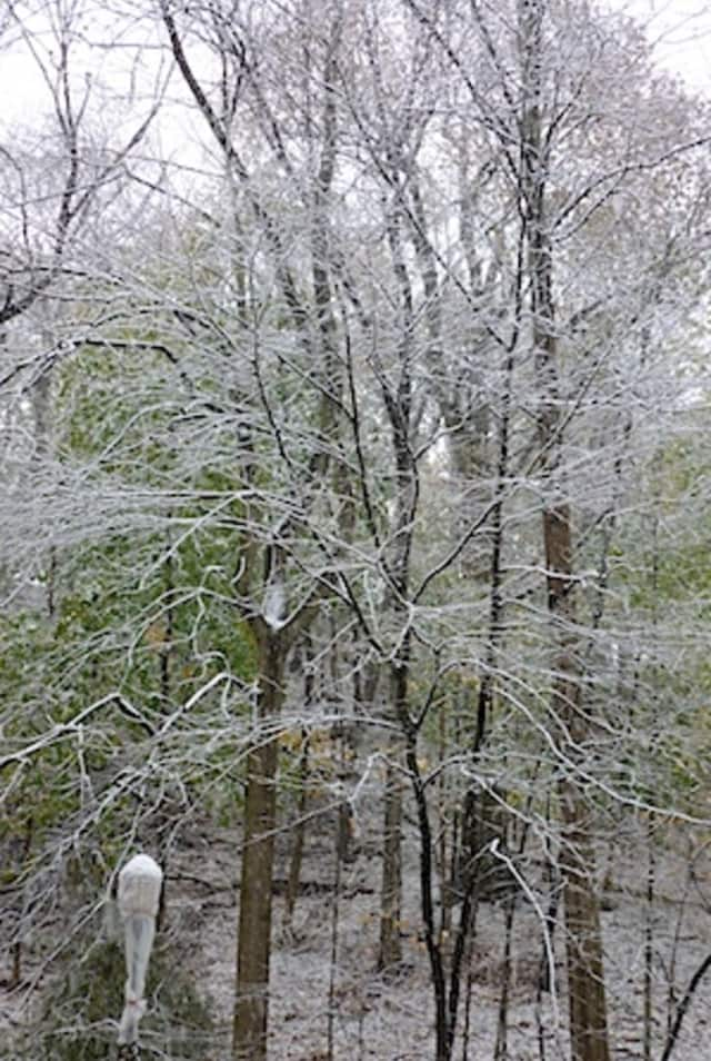 Send your snow pics to us and we'll upload them into our album, Greenburgh.