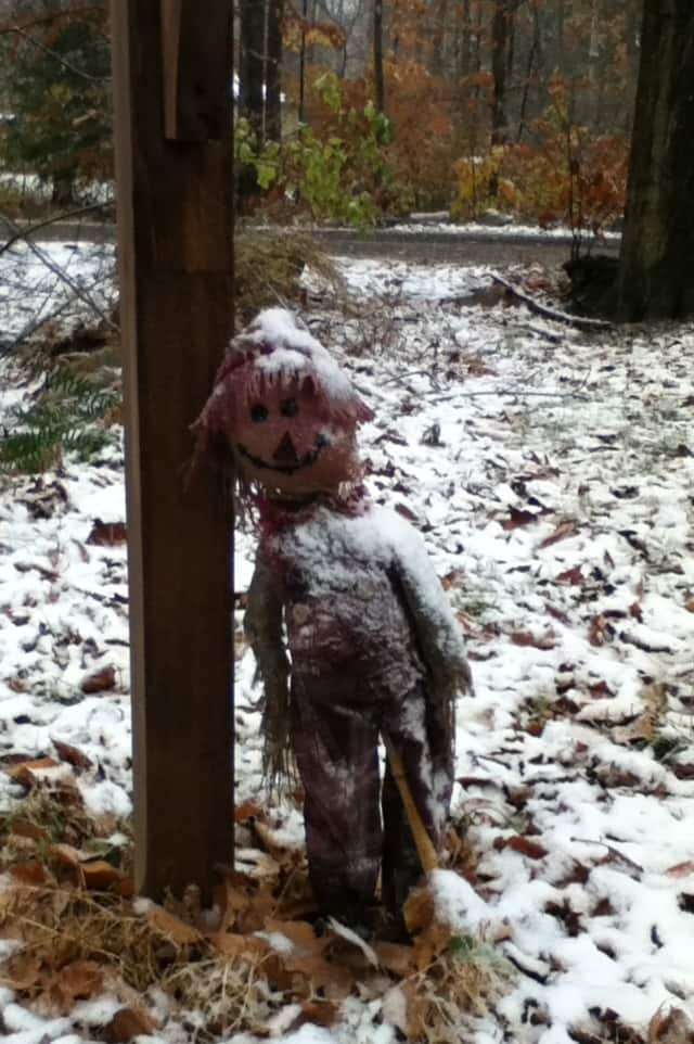 This scarecrow was becoming something of a snowman on Wednesday afternoon.