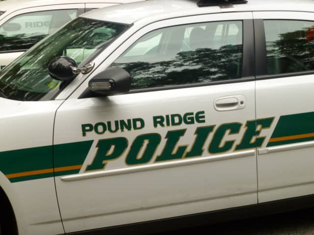 Police have charged a White Plains woman in the theft of $30,000 in jewelry from several Pound Ridge homes.